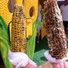 Yummy stops: barbecued corn on the cobb from Oahu's North Shore