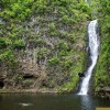 Halawa Valley Cultural Experience & Waterfall Hike