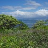 Supporting Hawaiian Islands Land Trust