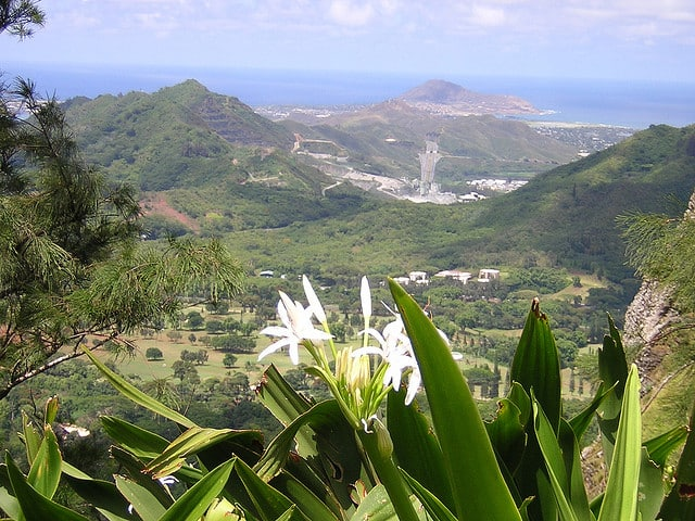 A view from the Pali Lookout