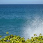 Kohala Coast Splash