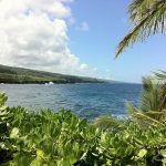 You'll find spectacular views of East Maui coast from Kahanu Garden