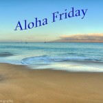 aloha-friday-kelly-wade-photography.jpg