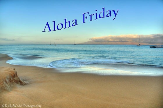 aloha friday kelly wade photography