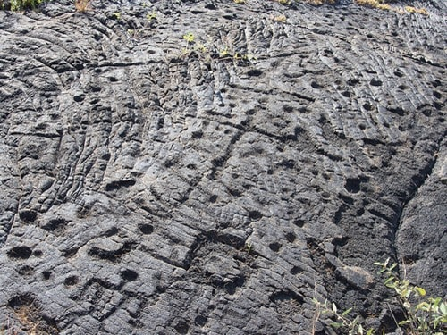 petroglyphs at Hawaii volcanoes national park