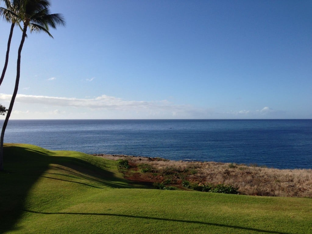 Whale watching from lanai at Four Seasons Lanai