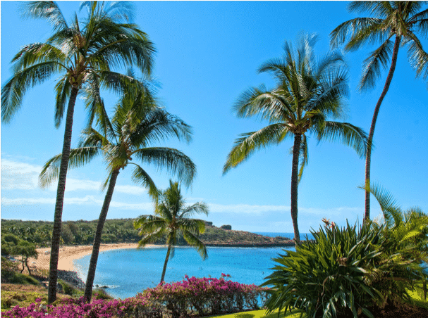 How To Pick The Best Time To Go To Hawaii Weather Price Crowds