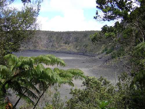A view through the forest of Kilauea Iki crater floor from the trail.