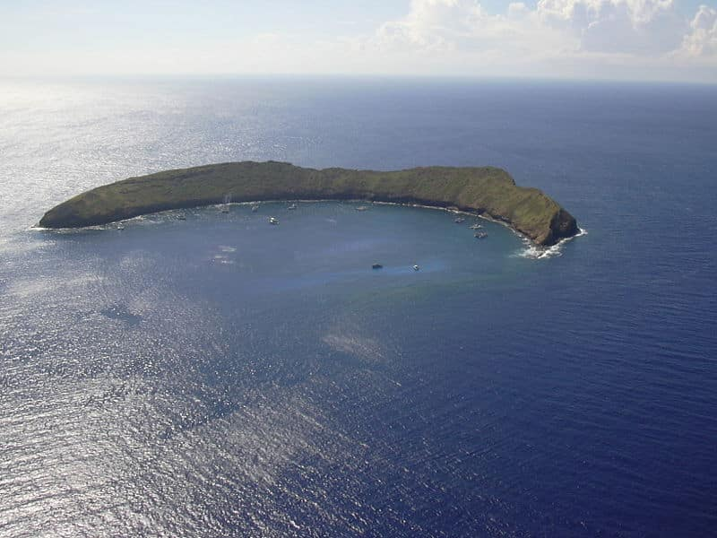 Only the top of Molokini volcanic crater stands above sea level. Photo credit to Forest and Kim Starr