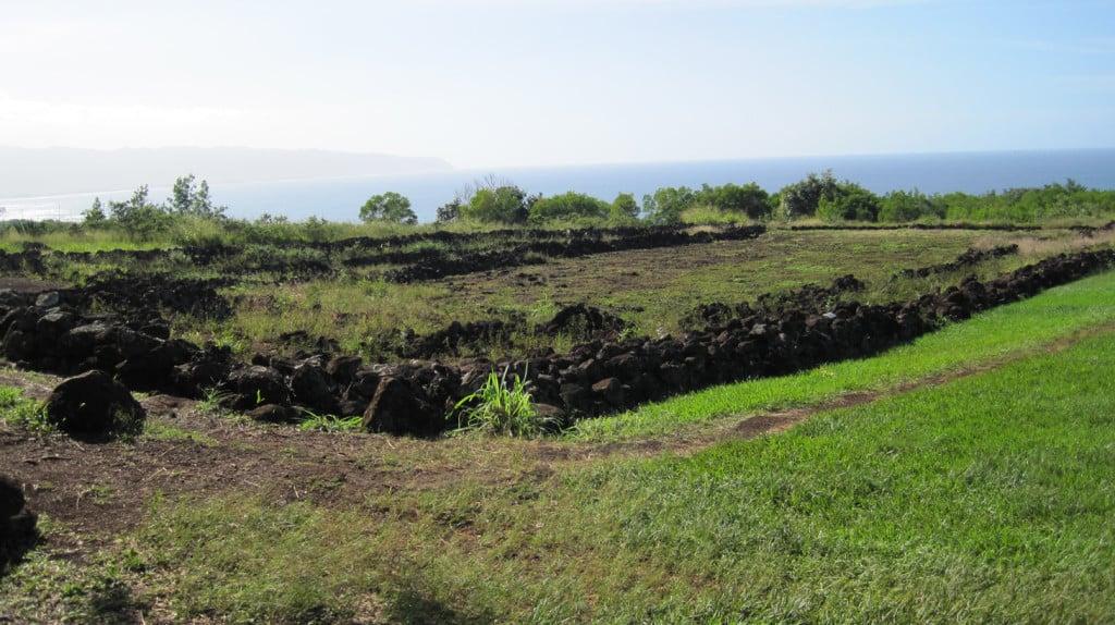 Puu o Mahuka Heiau on Oahu's North Shore. Photo credit to Joel Bradshaw.