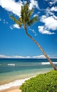 maui beach at kaanapali