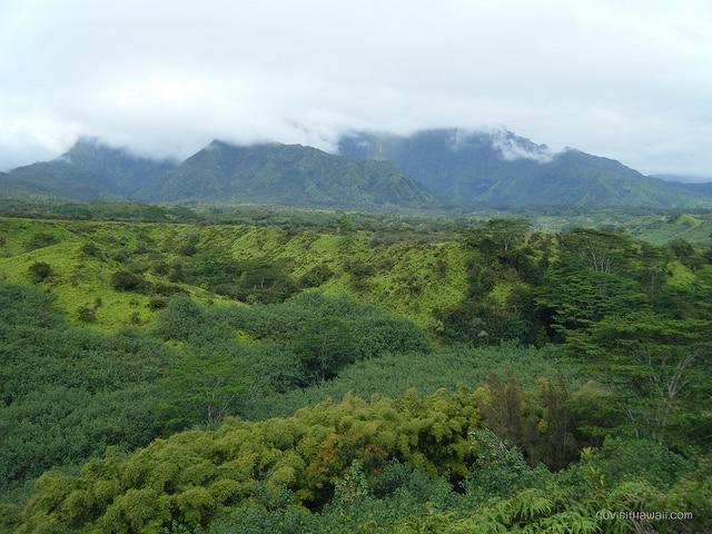 Mount Wai'ala'ale
