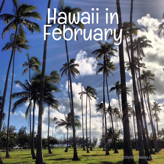 Hawaii in February