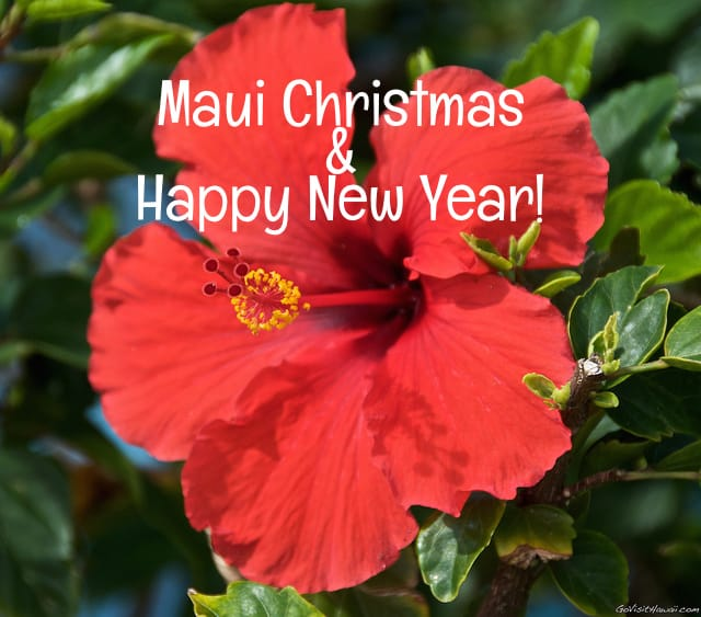 Maui Christmas and Happy New Year