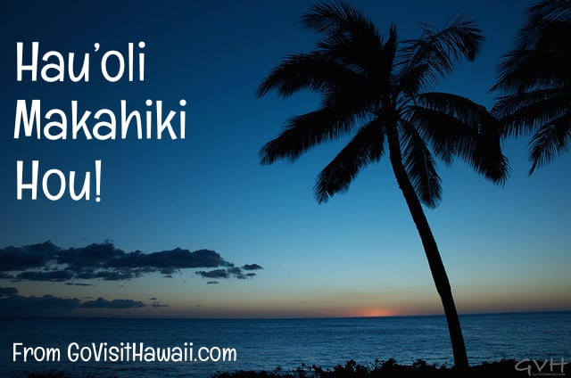 with 2017 quickly in view we want to wish you a hauoli makahiki hou which is the hawaiian way to say happy new year