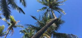 Hawaii vacation deals & news: April 26, 2017