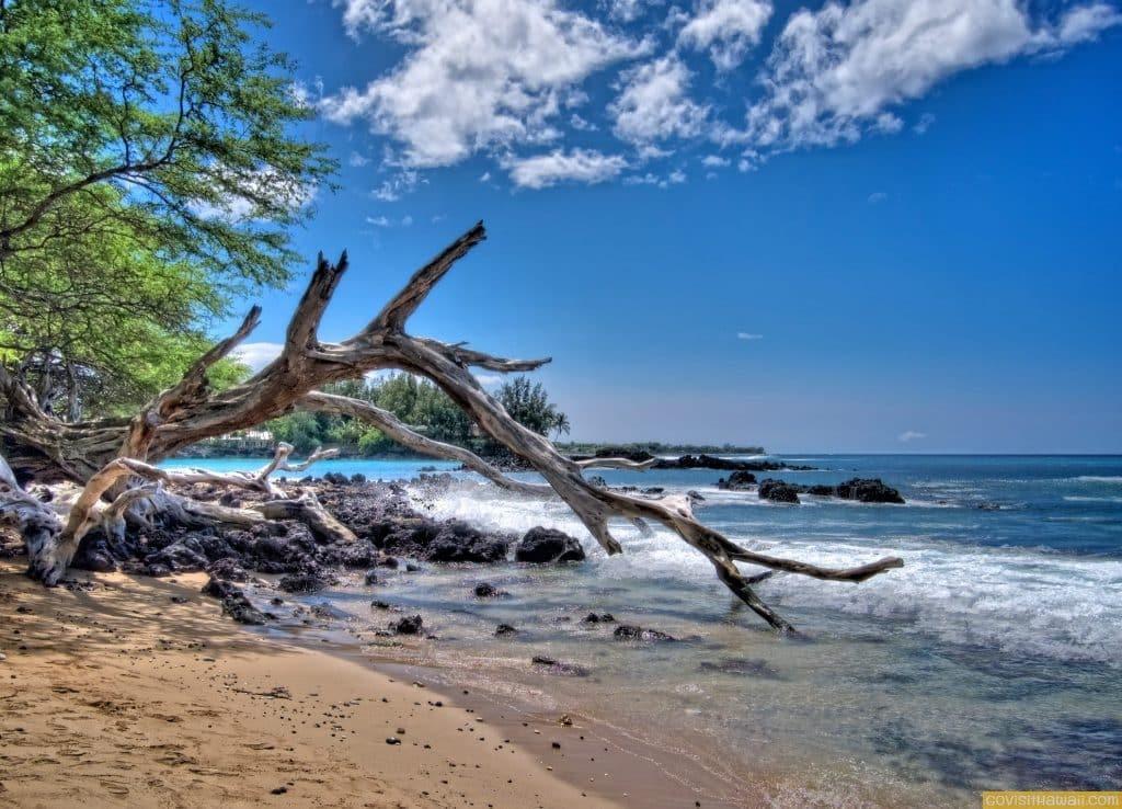 Take Me There Tuesday: Waialea Beach (Beach 69)