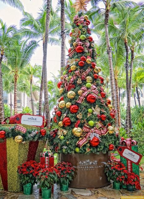 we complete this christmas photo walk around waikiki with a stop at the royal grove of the royal hawaiian shopping center christmas in hawaii includes