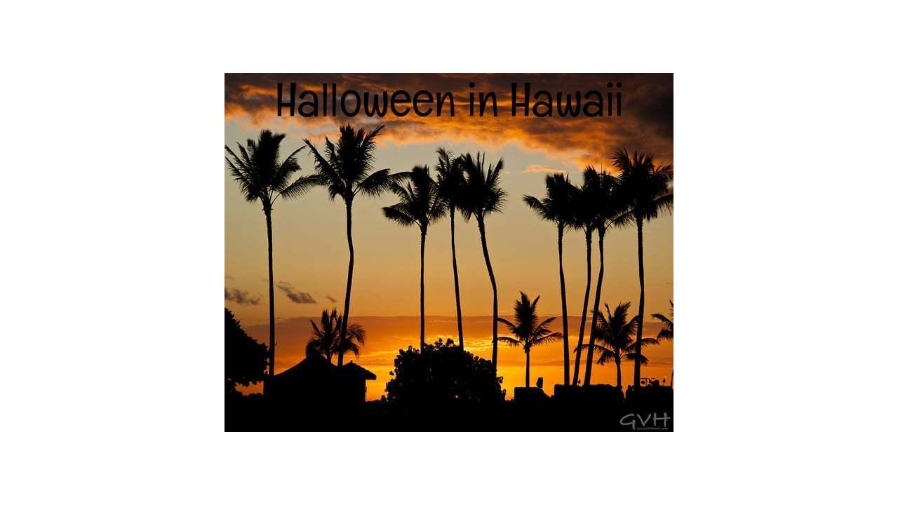 Go Visit Hawaii