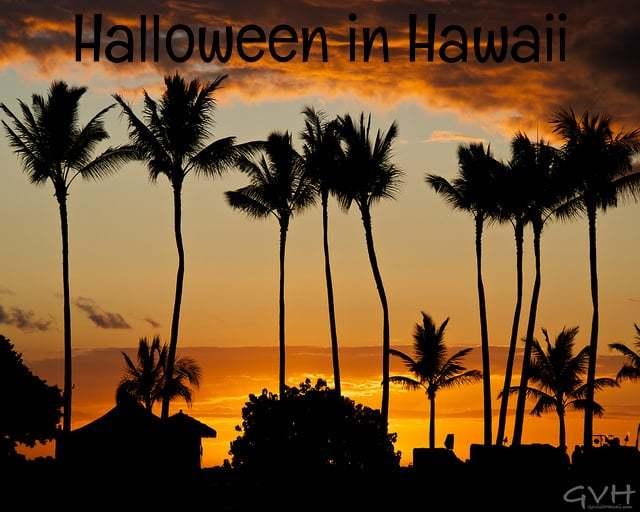 Perfect Go Visit Hawaii